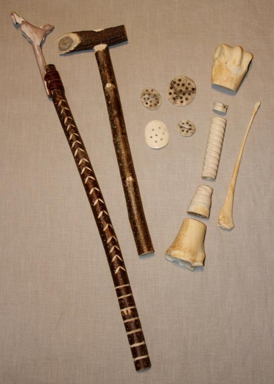 Knochenarbeiten für das Museum Mobil des Landesmuseums Rheinland Pfalz in Koblenz
